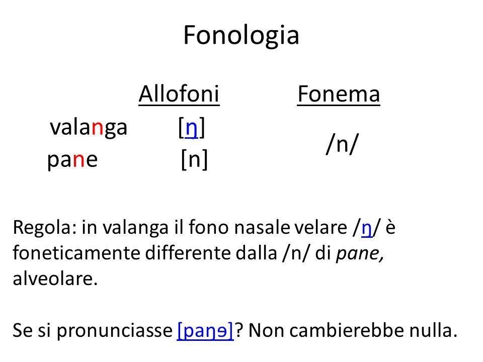 Fonologia valanga pane [ŋ] [n] /n/ Allofoni Fonema